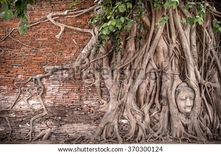Stone head of the sandstone Buddha covered by roots of Bodhi tree at Wat Mahathat, Ayutthaya, Thailand - stock photo