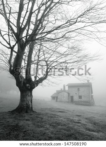 stone house in foggy forest - stock photo