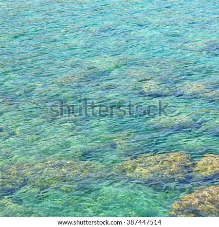 stone   in the   coastline   and light ocean        white sky - stock photo