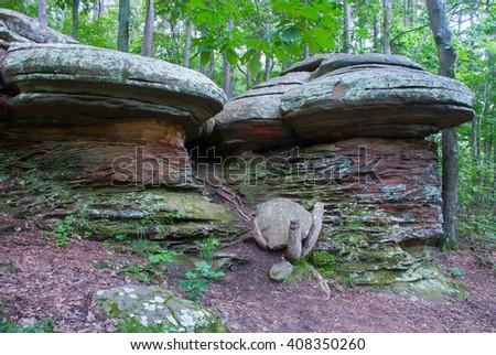 stone mushroomsgarden of the gods shawnee national forest southern illinois usa - Shawnee National Forest Garden Of The Gods