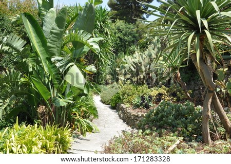 Stone path in green garden  - stock photo