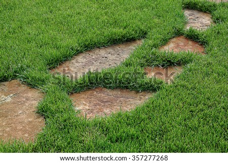 Stone path in green grass as a background. - stock photo