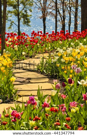 Stone path winding in spring flower garden with blossoming tulip and hyacinth flowers - stock photo