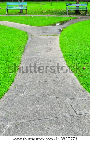 Stone Pathway in Green Park