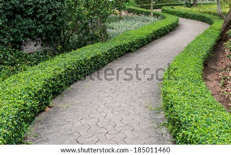 Stone pathway into garden during day time