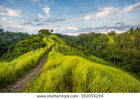 Stone road on the top of the hill in Ubud, Indonesia - stock photo