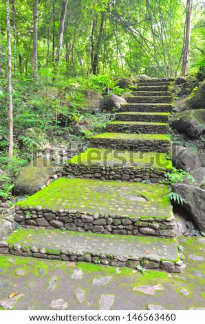 Stone stair covered with moss in national park - stock photo