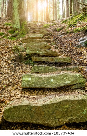 Stone staircase leading up a walkway through the Doubrava valley, Czech Republic with sun light at up - stock photo