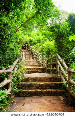 Stone stairs among green foliage leading across tropical woods. Way through forest in summer season. - stock photo