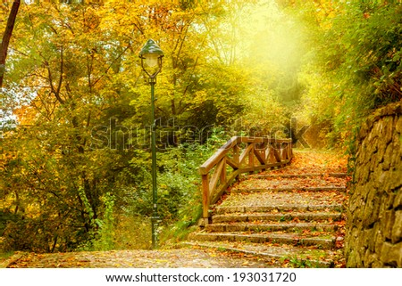 Stone stairs in a park. Autumn in Prague, Czech Republic - stock photo