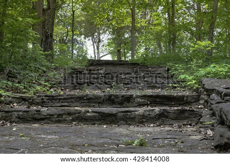 Stone stairs on a path in the forrest - stock photo