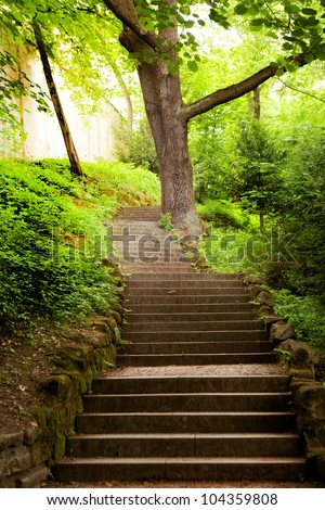 stone stairs on sunlight in the park - stock photo