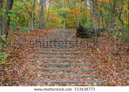 Stone stairway into the forest at Cherokee park in Louisville KY.