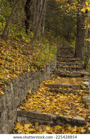 Stone Step Trail In Woods During Autumn - stock photo