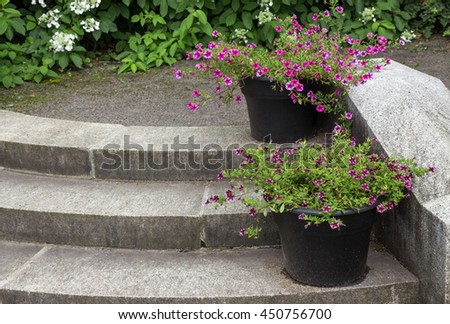 Stone steps in a garden, decorated by flower pots. - stock photo