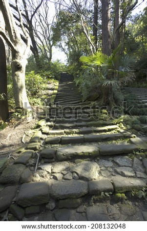Stone Steps Of The Temple