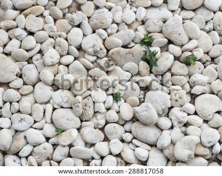 stone texture background - stock photo