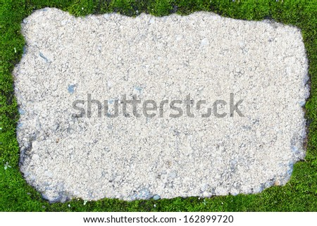 Stone tile framed by green moss texture background - stock photo