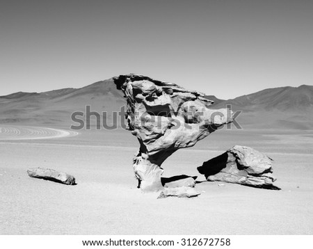 Stone tree rock formation in desert landscape of Altiplano with blue sky, Bolivia, black and white image - stock photo