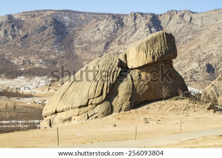 Stone turtle - a natural monument in Terelj National Park, Mongolia - stock photo