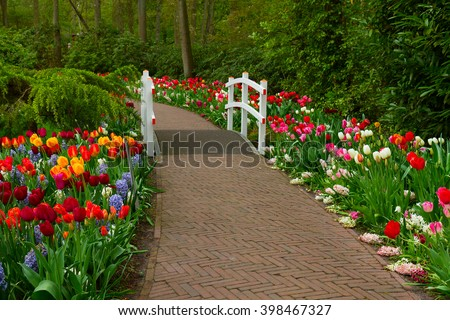 Stone walk way winding in spring  garden with green grass and blooming flowers, Keukenhof, Holland