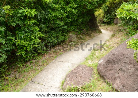 Stone walkway in countryside - stock photo