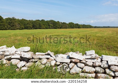Stone wall in the meadow with deciduous forest on the horizon - stock photo