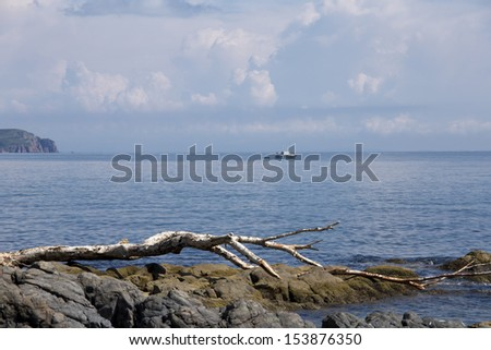stones in a sea and blue sky, water background