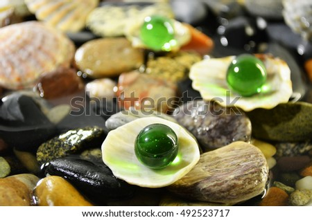 Stones in water, shells and glass colored balls background.
