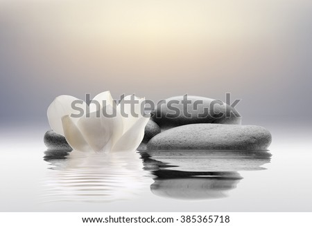 stones isolated on water - stock photo