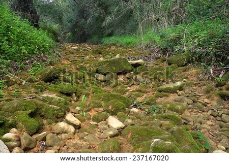Stones on the river bed. Photograph taken in Algarve, Portugal (II) - stock photo