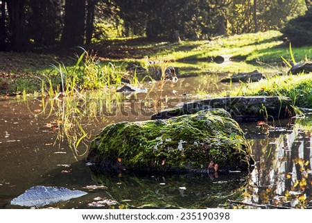 Stones overgrown with moss in a creek. Natural theme. - stock photo