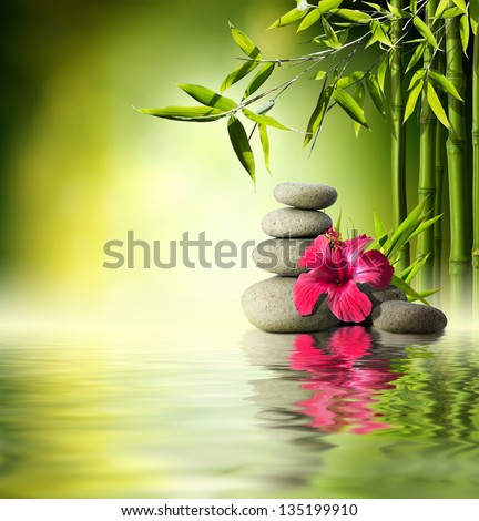 Stones, red hibiscus and Bamboo on the water - stock photo