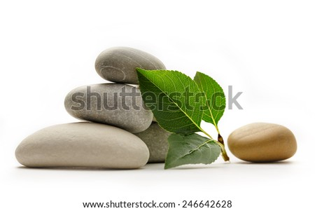 Stones with leaves on the white background - stock photo
