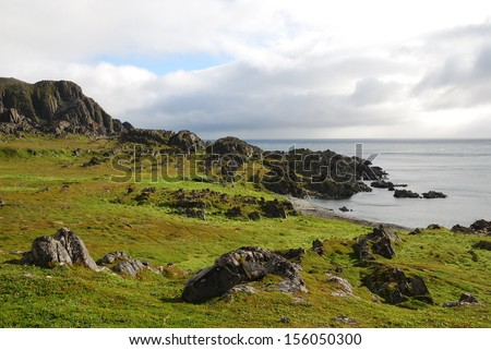 Stony shore is overgrown with green moss. The gray sea is reflecting the north sky with heavy clouds.  - stock photo
