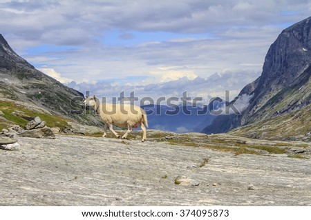 Stop at the Norwegian national road RV63, connecting the cities of Andalsnes commune R?uma and Valldal in the commune Nurdan, Remsdal