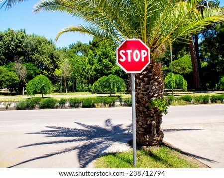 stop sign and palm tree  - stock photo