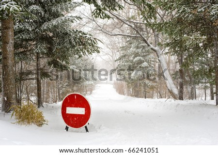 Stop Sign on winter forest Road under snowfall - stock photo
