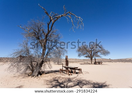 stopover  rest place in Kgalagadi transfontier park, game reserve in South Africa with blue sky - stock photo
