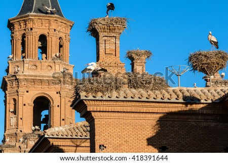 Storks in San Miguel Collegiate Church, Alfaro (Spain) - stock photo
