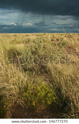 Storm clouds over desert grasses, Petrified Forest National Park, Arizona, USA - stock photo