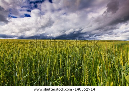 Storm clouds over rural field in summer
