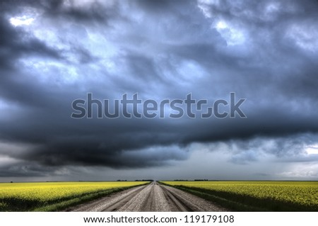 Storm Clouds Saskatchewan yellow bright canola field