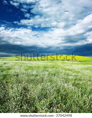 Storm cloudscape over field with grass