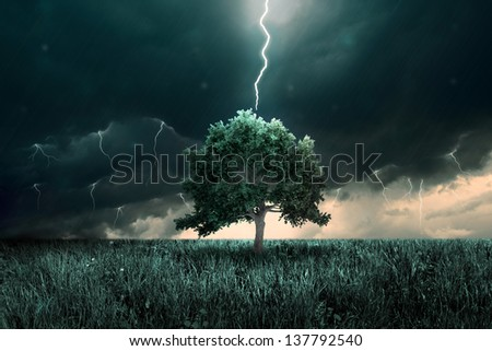 Storm of thunder and lighting over the alone tree - stock photo