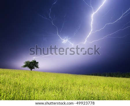 Stormy landscape with heavy clouds and the tree