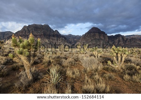 Stormy morning at Nevada's Red Rock Canyon National Conservation Area. - stock photo