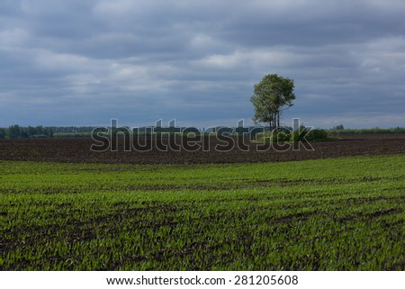 stormy sky in countryside in spring - stock photo