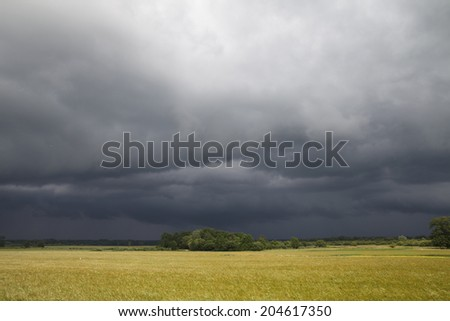 Stormy sky over wheat field. - stock photo