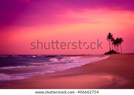 Stormy tropical beach with palm tree silhouettes at sunset - stock photo